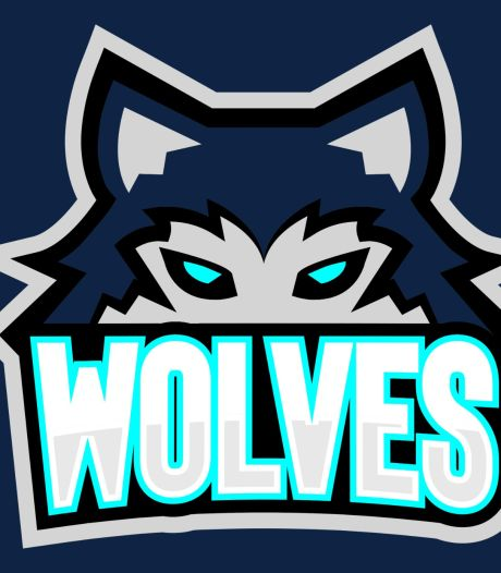 Klap voor Wolves: Geen licentie van ijshockeybond