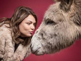 Huisdieren zijn het ultieme knuffelcontact: deze 6 BV's brengen een ode aan hun hond, ezel, kangoeroe, kip of kat