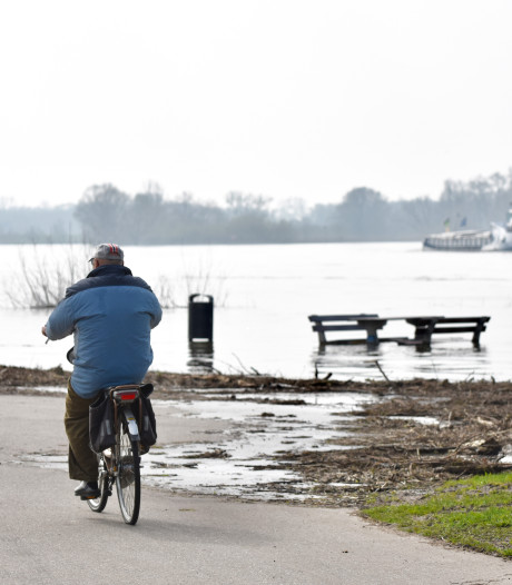 Het Wijhese Veer vaart niet vanwege hoogwater: 'Te gevaarlijk om te varen'