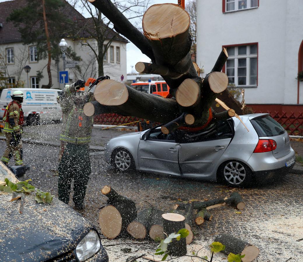 Schade door storm Herwart in Berlijn.