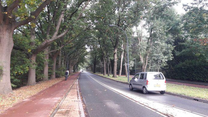 De Bredaseweg in Oosterhout.