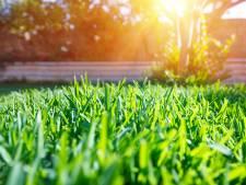 Gorinchem wil stukjes achtertuin terug