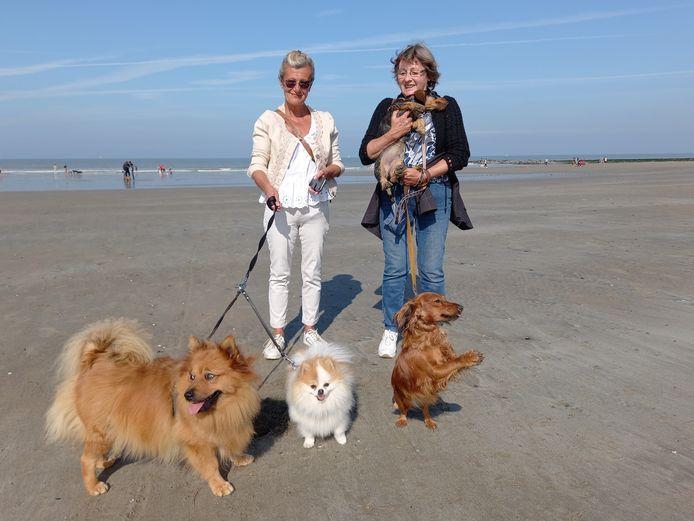 Kaat Depraetere (60) en Juliette Ongenae (68) met hun honden Louise, Chanel, Ida en Lili.