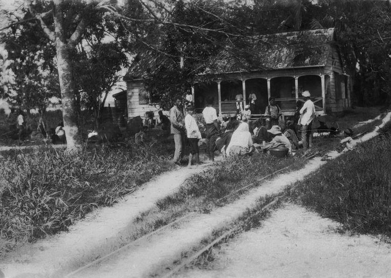 Gecontracteerden op Plantage Peperpot.   Beeld archief G. Kanis