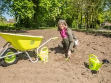 Van margrieten tot boterbloemen; vier extra wijken in Nieuwegein krijgen wilde bloemen