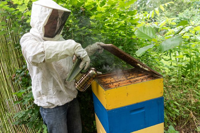 Piet van Dijk als imker. Met een beetje tabaksrook worden de bijen rustiger.