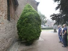 En wéér verdwijnt er een koperen regenpijp bij de Valburgse kerk