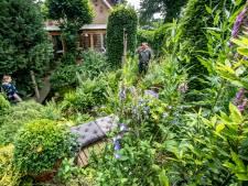 Willem is al twintig jaar bezig met watertuin op bungalowpark: 'De tuin verrast je telkens'