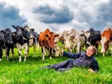 Boer Gerrit (56) is dol op zijn honderden 'dames': 'Koeien lijken veel op mensen'