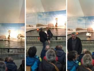 Antwerpse zoo hervat zeeleeuwenshows na protestactie