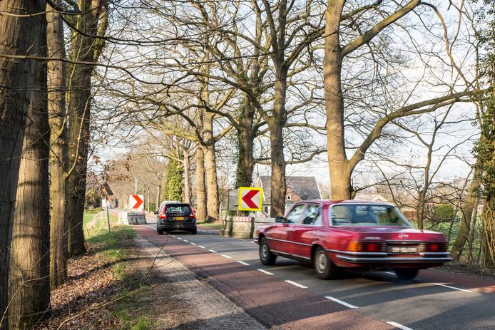 Een van de proefchicanes die de gemeente Bronckhorst plaatste op de Wildenborchseweg in Vorden. Vanaf begin april heeft de weg dertien permanente snelheidsremmers (chicanes en verkeersdrempels).