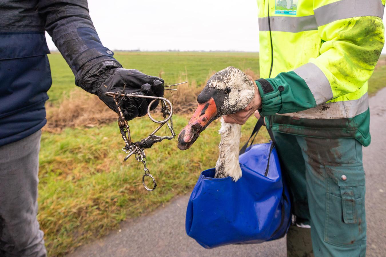 Met een dier in nood mogen dierenambulances binnen afzienbare tijd over de snellere busbaan.