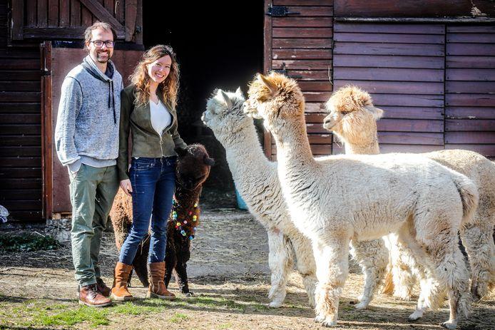 Kim Verburgh en Simon Mc Cann zijn in Gistel begonnen met hun project Alpaca Atelier