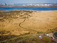 Ondanks de stikstofcrisis kan de natuurboulevard van Oostvoorne tóch worden aangelegd