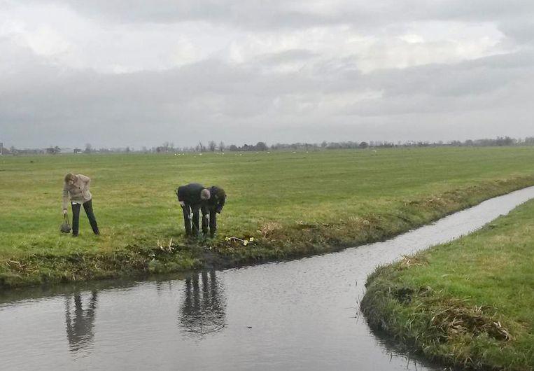 Het onderzoek van de recherche naar de schietpartij in Noordeloos. Beeld AD/Peter Koster