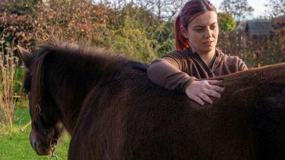 Tina biedt kiné aan voor mensen en paarden