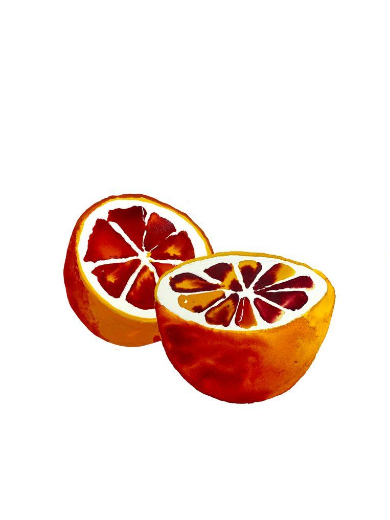 Bloedsinaasappel Beeld Emma Levie