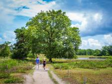 Lekker wonen: Heumen stormt top 10 van Nederland binnen en Mook beste van Limburg