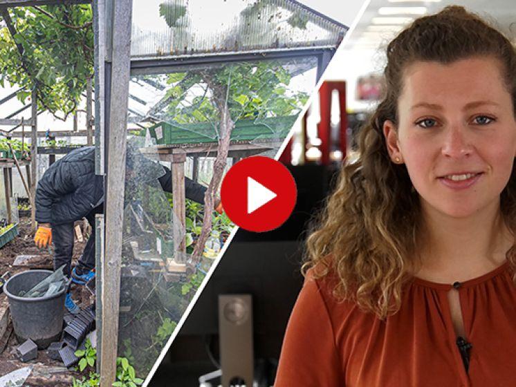 De Stentor Nieuws Update | Volkstuintjes vernield in Zwolle en teckelwinkel krijgt vaste plek in Deventer