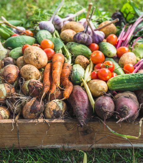 Cafeteria niet verbieden, maar btw op ongezond voedsel mag van Wageningen omhoog