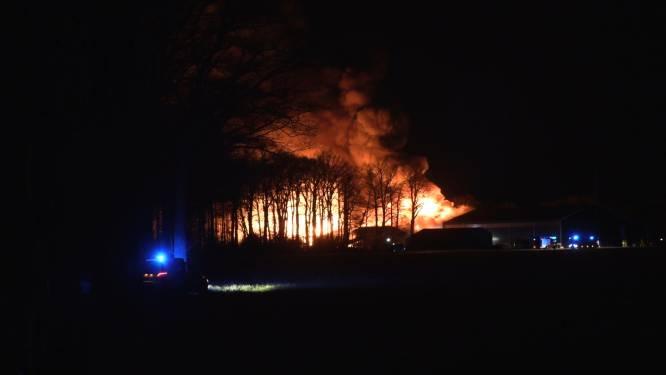 Zeer grote brand bij aardappelboer in Groenlo, twee opslaghallen in de as gelegd