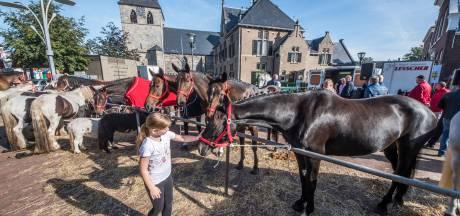 Paardenhandel in Denekamp bij het ochtendgloren