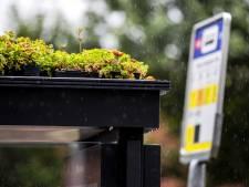 Stadsbestuur: 'Bushalte met groen dak interessant idee'