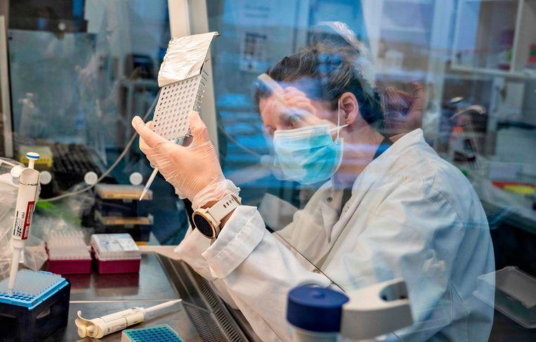 Een onderzoeker aan de universiteit van Aalborg houdt een set coronatesten tegen het licht. Beeld AFP
