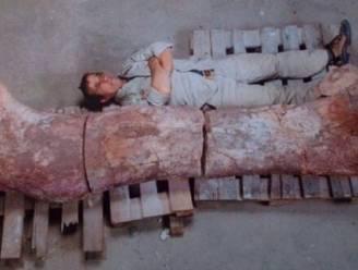 """""""Grootste dinosaurus ooit"""" in Argentinië opgegraven"""