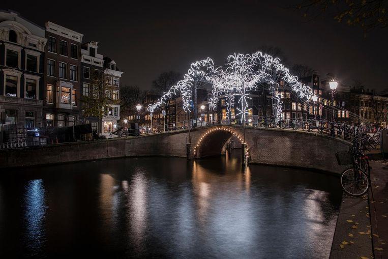 Spider on the Bridge Beeld Janus van den Eijnden