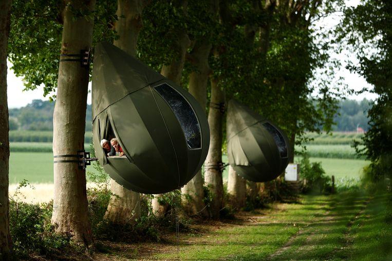 De Nederlandse kunstenaar Dre Wapenaar hing traanvormige tenten aan de bomen bij Borgloon.  Beeld REUTERS