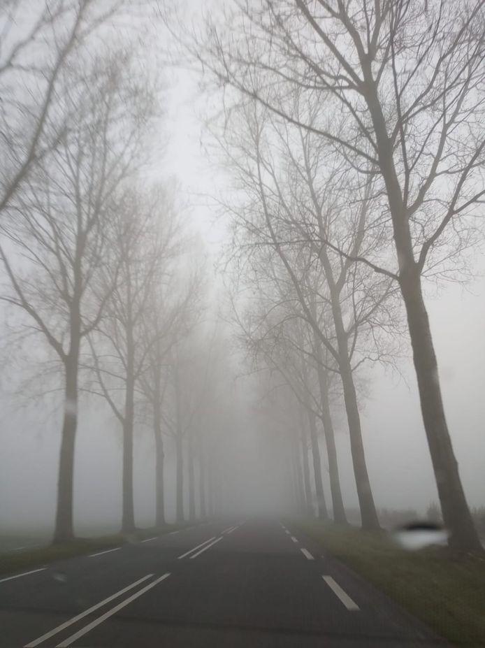 Op de wegen in de Noordoostplder is het erg mistig.