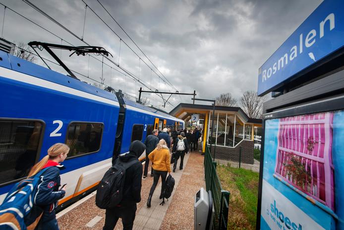 Bij het station in Rosmalen zou de verdachte een 'zwarte' sigaret hebben gekregen waarna hij vier auto's vernielde.