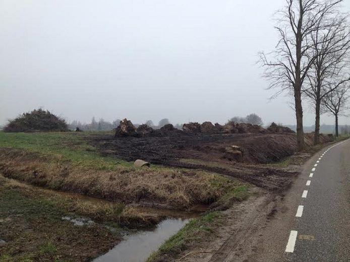 De 'plaats-delict' langs de Spilmansdijk in 2015, na de velling van de 16 bomen.