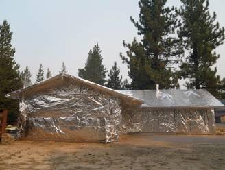 Nadat grootste boom ter wereld ingepakt werd: Californische huiseigenaren omwikkelen stulpjes met folie tegen oprukkende bosbranden