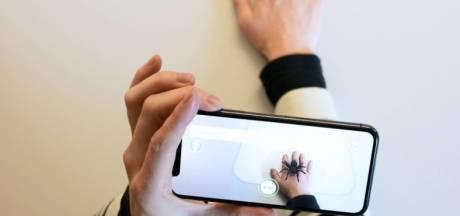 Ne plus avoir peur des araignées grâce à votre smartphone? Ce sera bientôt possible