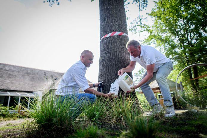 Rutger Cruiming (L) manager van recreatiepark Landal Twenhaarsvel en Jan van der Sluis, commercieel directeur van het bedrijf dat het bestrijdingsmiddel produceert. Ze zijn klaar om het middel op het rupsennest te spuiten.