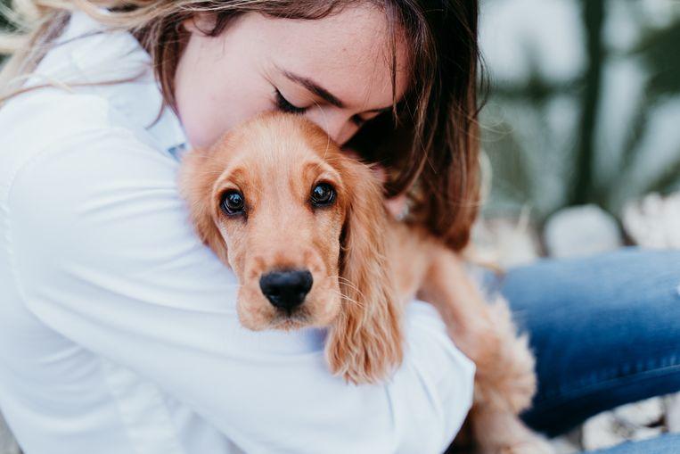 Unieke band hond en mens Beeld Getty Images