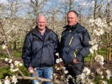 Jasper Bouwman uit Angeren koestert het feit dat hij nog samen kan boeren met zijn vader van 82