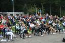 De paralympische helden uit Helmond werden dinsdagavond gehuldigd in De Warande, alle stoelen waren bezet