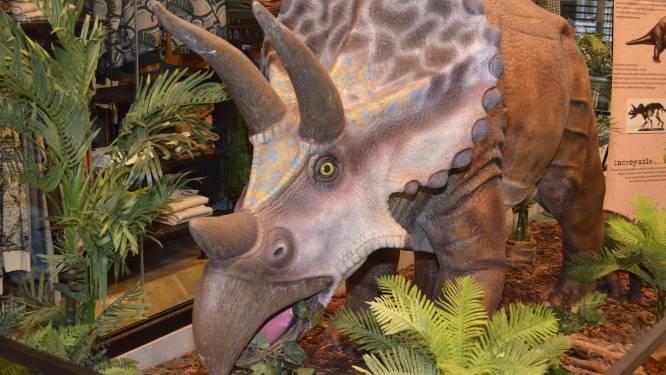 """Aller voir des dinosaures à Charleroi, c'est possible jusqu'en septembre: """"L'effet Wouaw"""""""