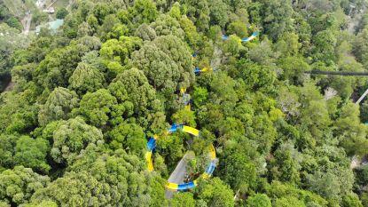 De langste waterglijbaan ter wereld: 1.140 meter glijden door de jungle