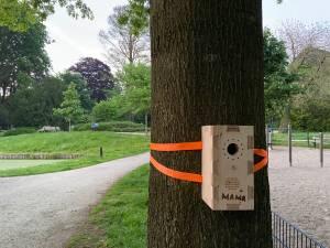 Mysterie: waarom hangen er 'pratende' vogelhuisjes in Park Eekhout in Zwolle?
