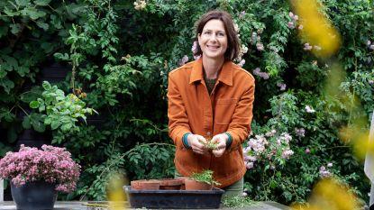 Zo maak je je tuin helemaal herfstklaar