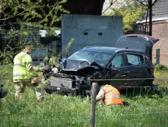 Auto mist bocht en duikt weiland in boven Edelareberg in Kerzelare: chauffeur heeft alleen pink bezeerd