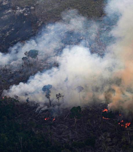 Demonstratie op de Dam voor aandacht natuurbranden Amazonegebied