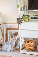 Posters (van Desenio) en spiegels hoeven niet altijd opgehangen te worden. Ook de kat is fan.