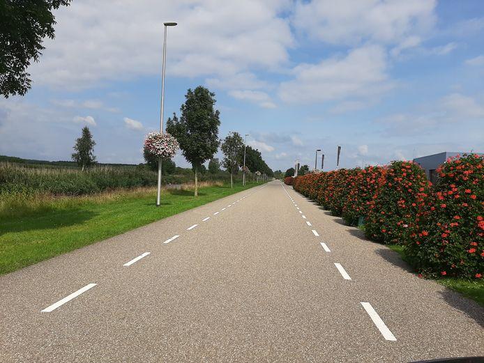 De straat op NextGarden waar het straatrace-ongeval gebeurde