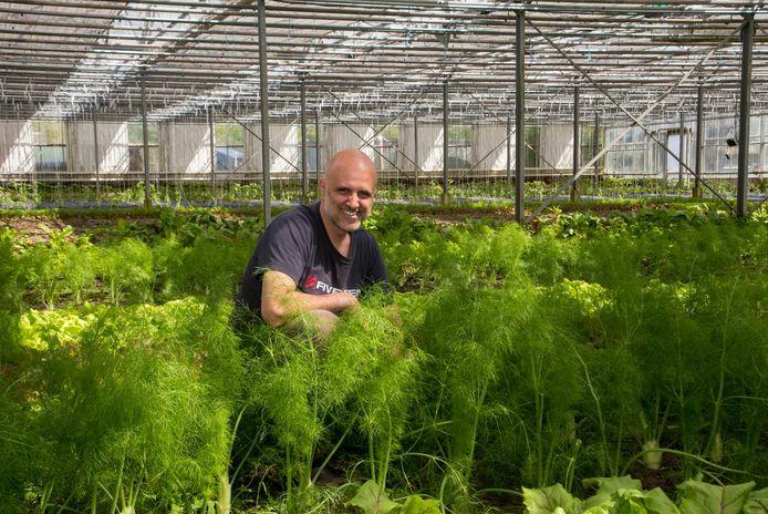 Bioboer Rony Neckebroeck in zijn nieuwe serres in Heusden.