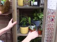 Plantenruilkasten voor Waalwijkers met groene vingers